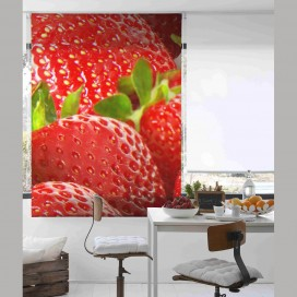 Estor Digital FRAISES C-1216E by Zebra Tex. V.Hogar
